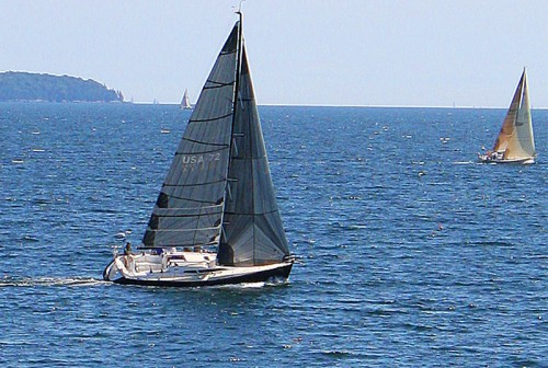 Viewing a regatta from our private shorline